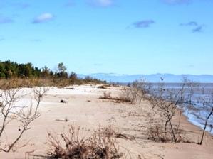 Reach the Beach test